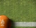 Wat kan de rechter met de veelbesproken besluiten van de KNVB over het betaald voetbal?